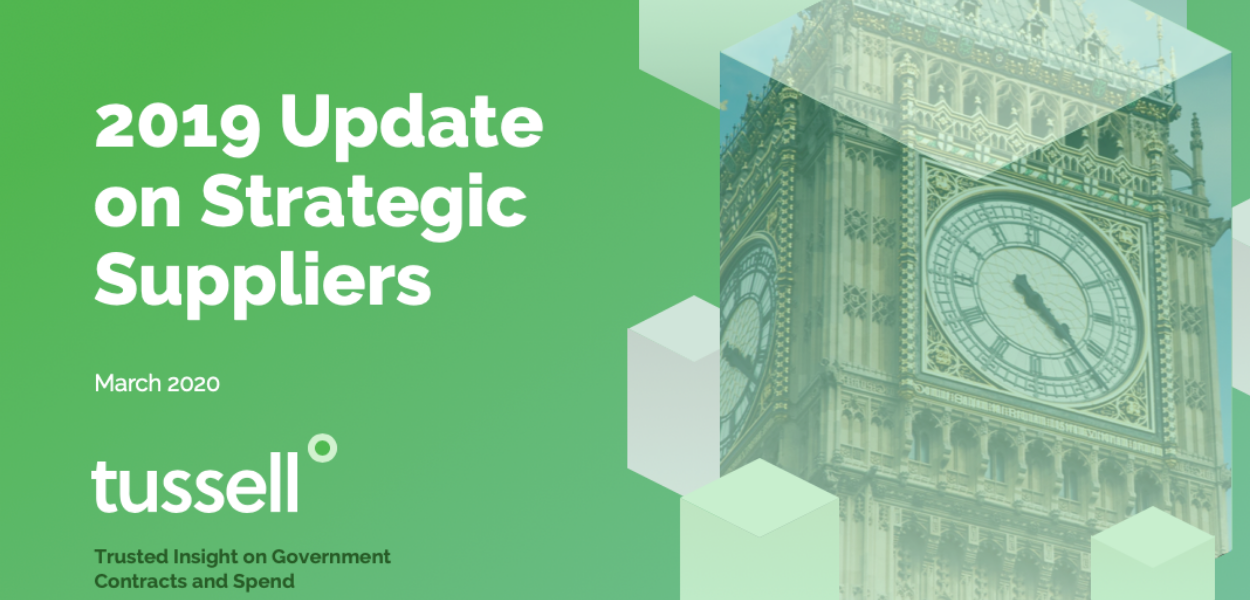 Analysing the Strategic Suppliers to Government [PDF download]