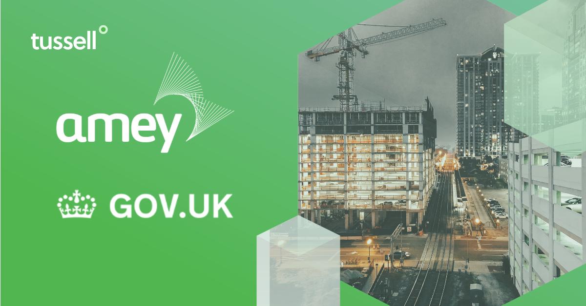 Amey - Public Sector Profile 2019