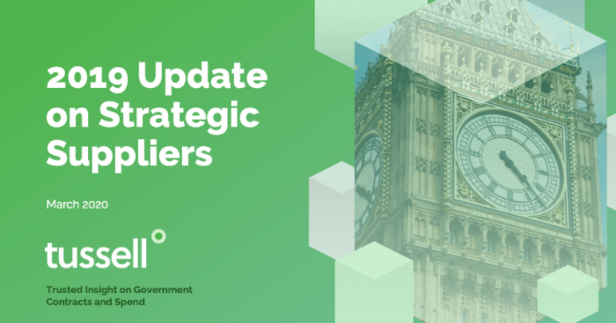 Strategic Suppliers' public sector revenues fell in 2019